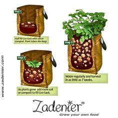 www.zadenier.com