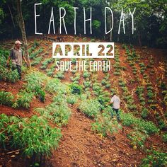 Earth Day is kind of a big deal around here. Last year you helped us plant 2 million trees. This year it's going to be even better. #SaveTheEarth