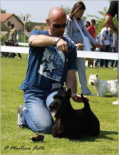 INVISIBLE TOUCH KENNEL Goran Gladic with CH From Dash Mountain Farm's Desperado on Dog Show Photo by Marina Forte