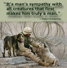 La citation de Schweitzer est belle. Mais je ne trouve pas que cette photo soit très appropriée pour démontrer notre sympathie envers les animaux : les emmener à la guerre pour qu'ils risquent de se faire tuer ou d'être traumatisés ?