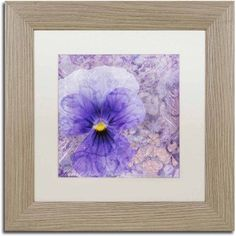 Trademark Fine Art 'Viola - Secret Love' Canvas Art by Cora Niele, White Matte, Birch Frame, Size: 16 x 16, Multicolor