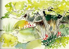 A quiet corner at Mt Cootha Botanic gardens. Ink and watercolour - Moleskine Watercolour sketchbook.