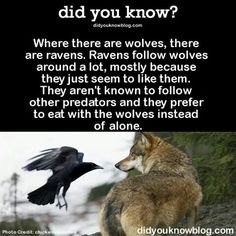 Natural friends?