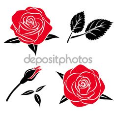 Beautiful flower red black rose set with leaf, Vector roses ...