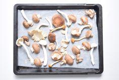 Broodje pulled mushroom – 5 OR LESS