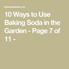 10 Ways to Use Baking Soda in the Garden - Page 7 of 11 -