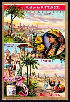 """Liebig Beef Extract """"A Journey Round the Mediterranean"""" German issue, 1894 ~ North Africa Scrapbook, Reptiles And Amphibians, Paris, North Africa, Trading Cards, Morocco, Journey, Photo And Video, Retro"""