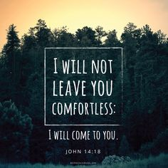 """I will not leave you comfortless: I will come to you"" (John 14:18). #DailyQuote"