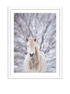 "Photos.com by Getty Images ""Snow Horse"", http://www.myhabit.com/redirect/ref=qd_sw_dp_pi_li?url=http%3A%2F%2Fwww.myhabit.com%2Fdp%2FB00R30TG78%3F"