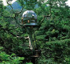 Essa casa na árvore, construída pelo japonês Takashi Kobayahsi, tem o propósito expresso de se comunicar com o espaço exterior. Como um farol brilhante entre as copas das árvores, é fácil imaginar a cúpula obtendo sucesso em sua missão de fazer contato com a vida alienígena