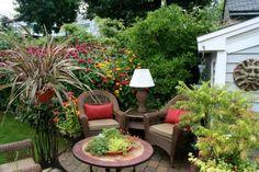 Mini jardin de plantes au table