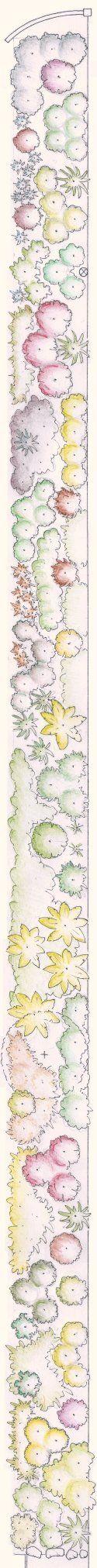 Design Portfolio - 14 - Coastal NZ native planting plan