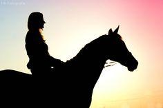 Marit Hilarius Fotografie   PAARDEN Golden Hour, Beautiful Women, Horses, Fine Art, Portrait, Duke, Chloe, Animals, Instagram