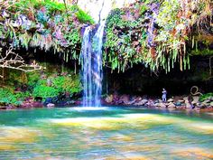 HDR Twin Falls with Kevin Bates >Fern Grotto, Kaua`i