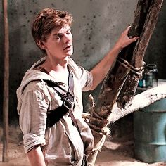 """""""Well?!"""" The other Gladers crowd around Newt. Minho steps forward """"So did ya ask her out, shuckface?"""" Newt just shakes his head then inhales deeply, """"No, not yet. It's harder than you think. I just take one look into her big, sparkly eyes and my mind just washes away whatever I was thinking about."""""""