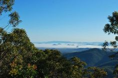 Mount Archer, Rockhampton: See 59 reviews, articles, and 14 photos of Mount Archer, ranked No.5 on TripAdvisor among 28 attractions in Rockhampton. Archer, Attraction, Stuff To Do, Things To Do, Airlie Beach, Online Tickets, Australia Travel, Trip Advisor, Road Trip