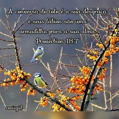 #Provérbios #Sabedoria #DeusFiel #rosiigiil