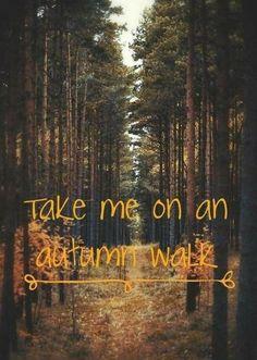 30 ideas nature autumn hello october for 2019 Autumn Cozy, Fall Winter, Autumn Quotes Cozy, Dark Autumn, Autumn Nature, Autumn Forest, Winter Season, Autumn Leaves, October Country