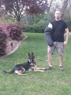 Will & Zev Protection Dog Training, Dog Pictures, Dogs, Pet Dogs, Doggies