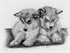 drawing of puppies - Google Search