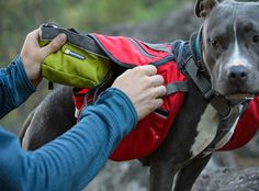 Ruffwear Quencher Cinch Top™ Waterproof, Collapsible, Closeable Dog Bowl