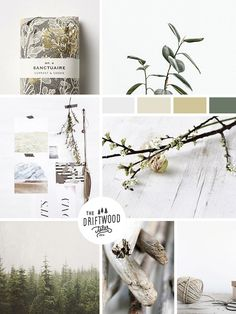 Moodboard / Reclaimed Essence