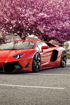 50 Stunning Lamborghini Photographs - Style Estate -