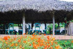 "Restaurant ""Los Geranios"""