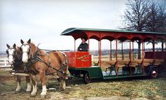 Winery Tour in a Horse-Drawn Trolley from Temecula Carriage Company (Up to 61% Off). Three Options Available.