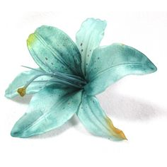 Turquoise Blue Tiger Lily Flower Hair Clip (12 AUD) ❤ liked on Polyvore featuring accessories, hair accessories, flowers, fillers, backgrounds, alligator hair clips, flower hair clip, barrette hair clips, long hair accessories and flower hair accessories