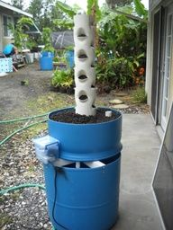 Self contained aquaponic barrel with a vertical tower
