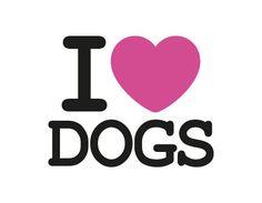 Mais conheço as pessoas e com isso amo ainda mais meus cachorros ❤❤❤