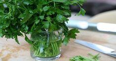 Pro přípravu tohoto účinného léku s antibakteriálními a antivirálními účinky budete potřebovat následující suroviny: 4 sklenice vody (1 litr) 4 polévkové lžíce petrželky 2 až 3 cm kořene petržele (volitelné) Příprava 1) Najemno nakrájejte čerstvou petrželku. Pro zesíleně účinku lze nastrouhat a přidat do receptu i trochu petrželového kořene. 2) Převařte litr vody. 3) Petrželku …