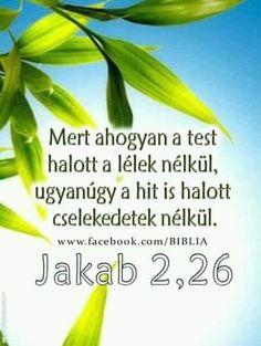 Herbs, Bible, Herb, Medicinal Plants