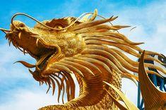 Escultura, Dragões, Cabeça Do Dragão, Dourado