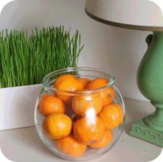 How to grow an wheatgrass arrangement in 7 days