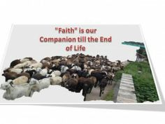 Can we change our Faith?