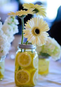 Gerbera Daisy -lemon table decor, I'd love that for my shower maybe. since I have different centerpieces for the wedding. Decoration Table, Table Centerpieces, Wedding Centerpieces, Wedding Decorations, Wedding Tables, Centerpiece Ideas, Decor Wedding, Daisy, Moraira