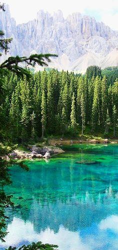 Trentino-Alto Adige, Italy #italy #italia #travel