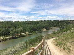 Calgary Sandy Beach Park - All You Need to Know Before You Go - TripAdvisor Calgary, Railroad Tracks, Need To Know, Trip Advisor, River, Park, Vacation Ideas, Beach, Summer