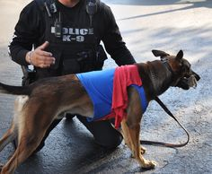 Apopka Police K-9 at StarChild Academy - Wekiva on October 22, 2014.