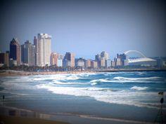 Durban beach Kwazulu Natal, Dolphins, Hibiscus, San Francisco Skyline, South Africa, Followers, New York Skyline, Birth, Coast