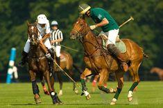 Torneo de Polo (Sotogrande)