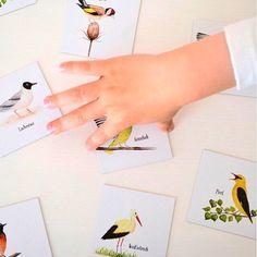 """Die kleinen Dinge on Instagram: """"VOGELWELT war damals unser erstes Memo Spiel von Brigitte Baldrian 💛 Und wir lieben es noch immer💛 Im Shop findet ihr die Memo Spiele:…"""" Shops, Illustration, Cards, Instagram, Little Ones, Little Things, Remember This, Do Your Thing, Games"""