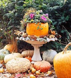 Jack o Planter photo. Pumpkin used as a garden planter for flowering kale and placed in bird bath. Outdoor fall decorating ideas.