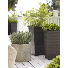 Tidore Tall 27.5 Planter in Garden, Patio | Crate and Barrel, $99.95 and $79.95