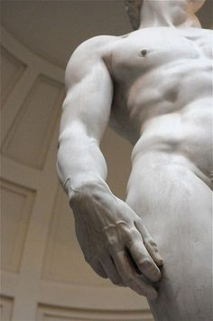 The David in Florence, Italy by Michelangelo