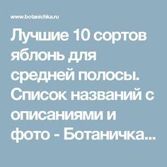 Лучшие 10 сортов яблонь для средней полосы. Список названий с описаниями и фото - Ботаничка.ru - Страница 5