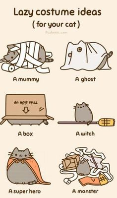 Halloween costume suggestions for your cat!