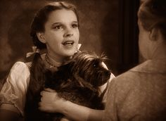 """""""Oh, Auntie Em - there's no place like home!"""" Judy Garland was the perfect Dorothy!"""